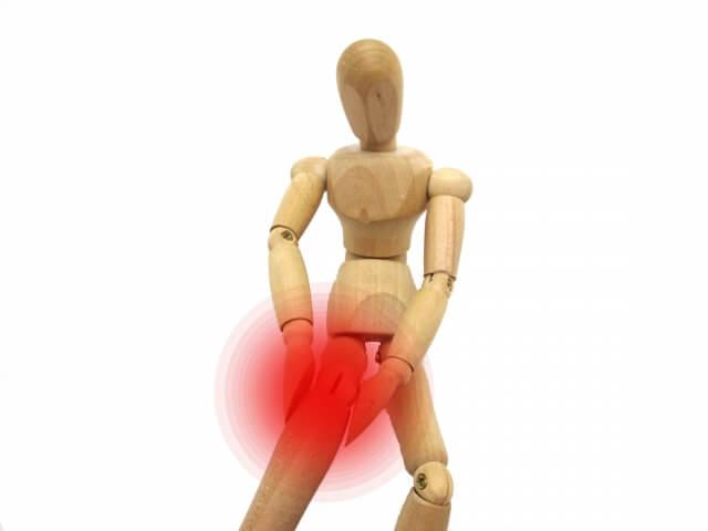 膝 軟骨 守る