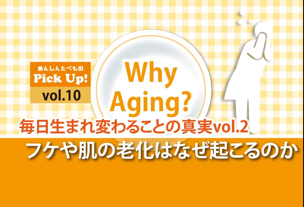 フケ 肌の老化 原因